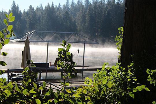 Into November mist